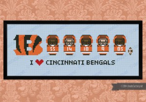 Cincinnati Bengals american football team