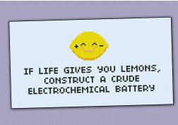 """If life gives you lemons"" quote"